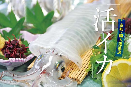 【ホテル丹後王国 京丹後『夏の新定番』】京都・間人港 直送「活イカ」プラン